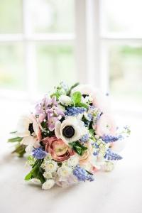 catkin flowers